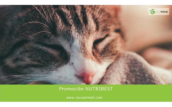 PROMOCIÓN NUTRIBEST
