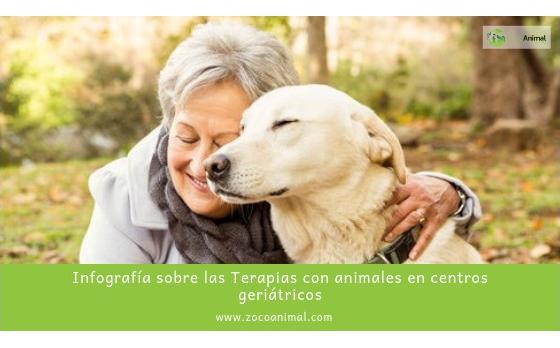 Infografía sobre las Terapias con animales en centros geriátricos