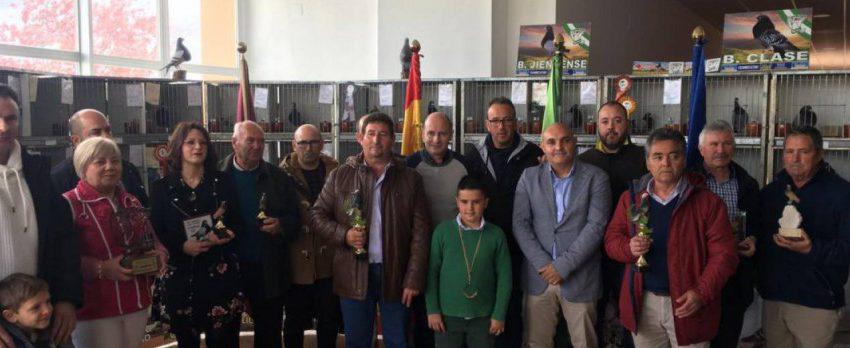 33 Campeonato Provincial de Palomas Deportivas